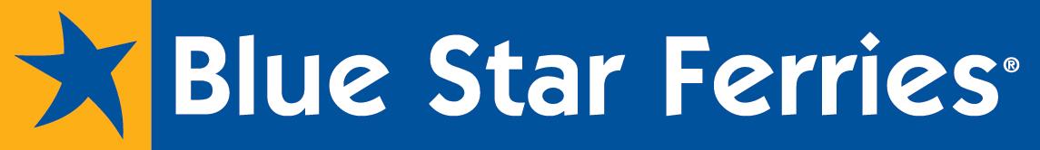 blue_star_logo_sketo_newcolor_nofileto copy.jpg